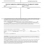 South Carolina Special Warranty Deed Form_Page_1